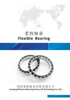 Flexible Bearing